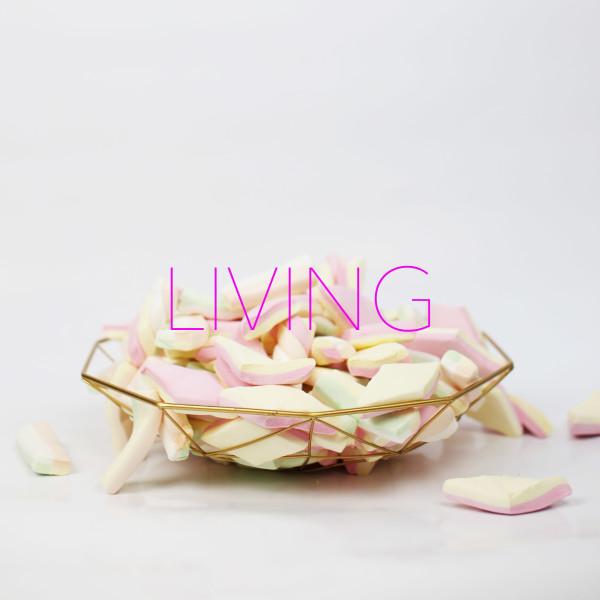 KATEGORIE_LIVING